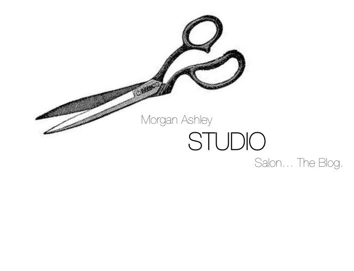 morgan ashley the salon blog