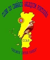 CLUBE DO CANÁRIO ARLEQUIM PORTUGUÊS
