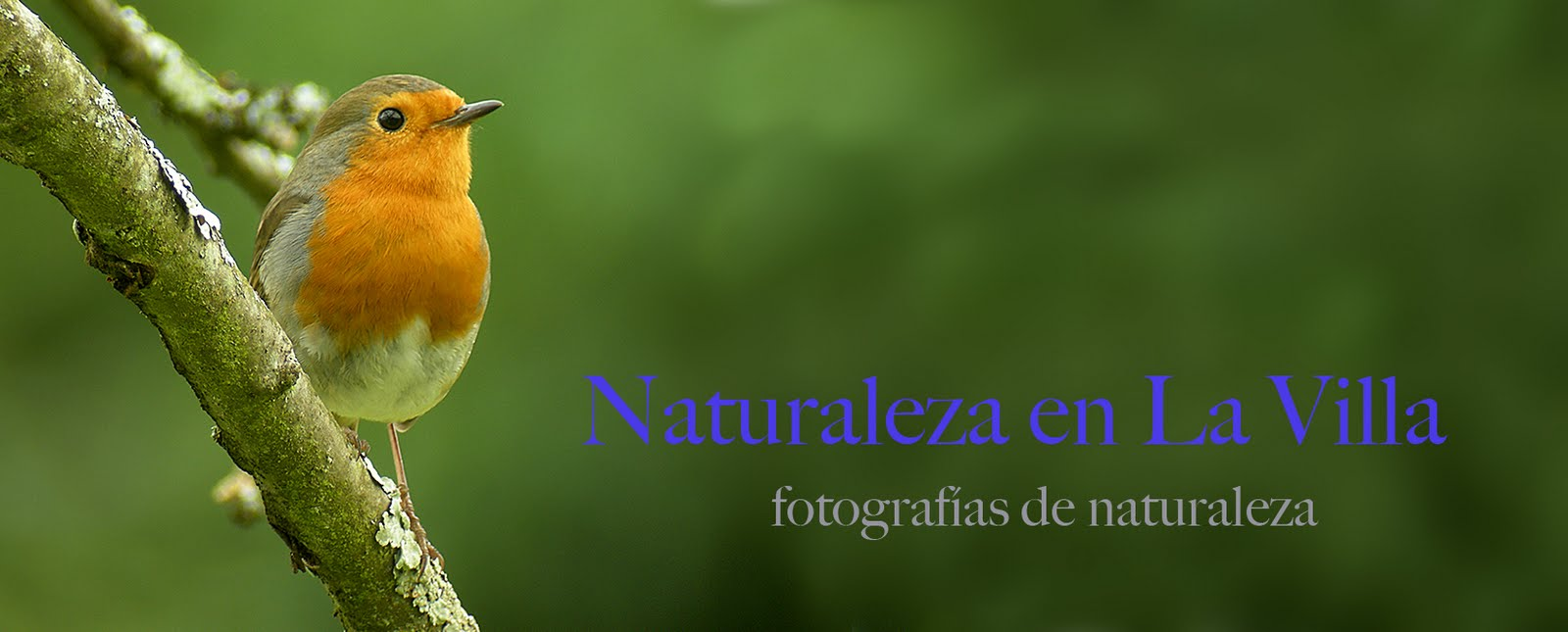naturaleza en La Villa