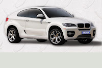 BMW X6 Coupe 8 BMW X6 Coupe Conversion