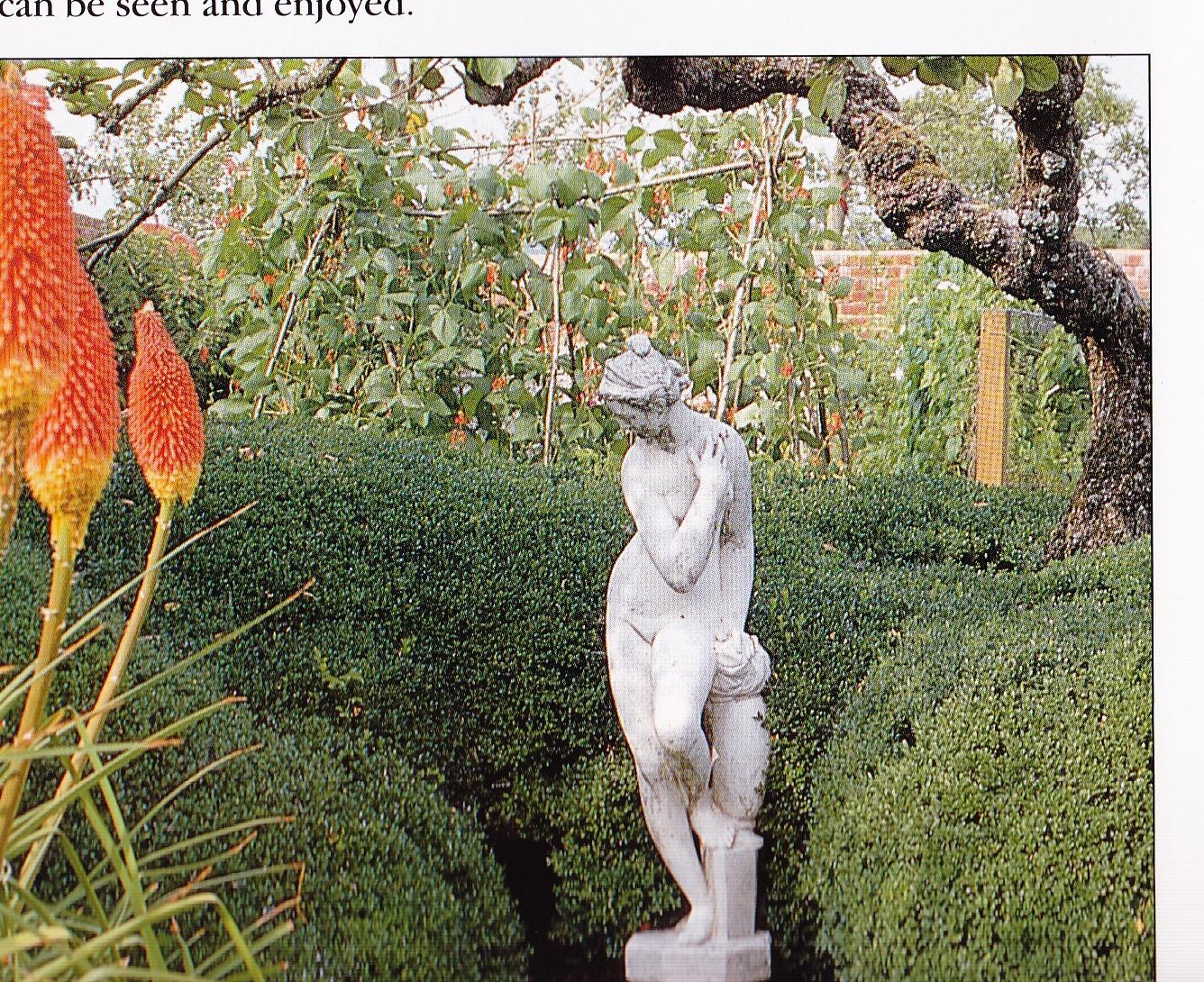 il giardino di montagna: febbraio 2011 - Giardino Fiorito Disegno