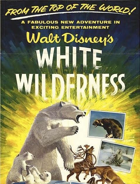 The Disney Films: White Wilderness - 1958