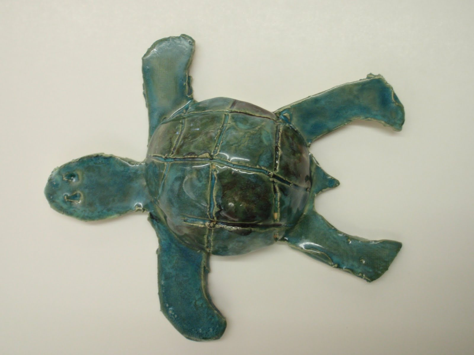 copy of turtles lessons tes teach