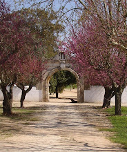 Convento da Serra