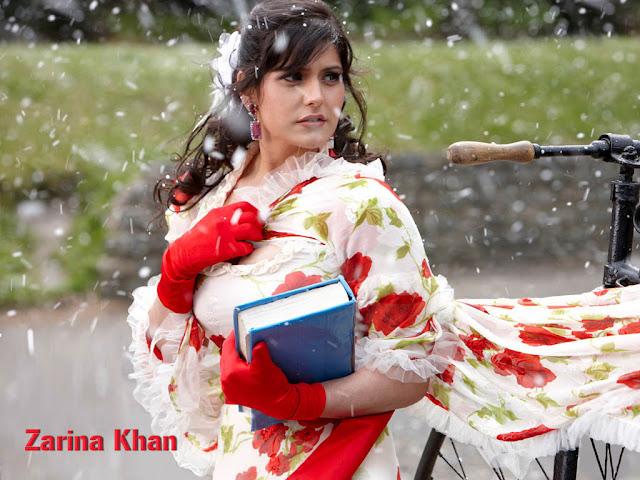 Zarine Khan, la sosie de Katrina Kaif
