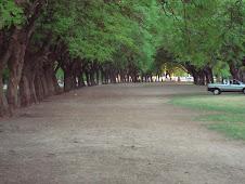 Same Park