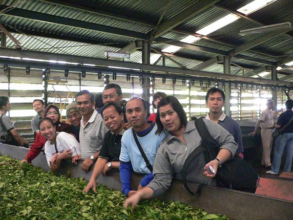 at Perkebunan VIII Subang