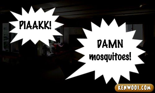 earth hour damn mosquitoes