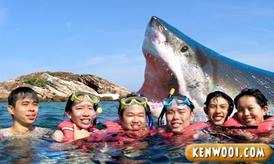photo with shark
