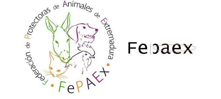 FEPAEX