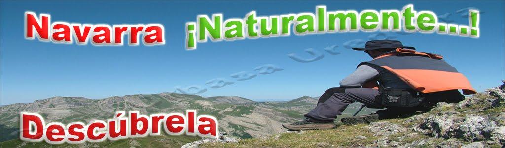 Navarra Naturalmente. Turismo Rural  Casas Rurales Navarra Agroturismo, Hoteles  Rutas
