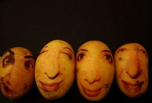 [potato_portraits_07.jpg]