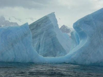 Fine looking Icebergs