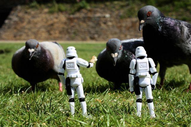COIN FLOOOOOooooooooD - Page 3 Stormtroopers_21
