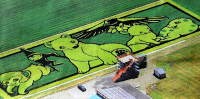 Japanese Rice Paddy Art 2010 Seen On www.coolpicturegallery.net
