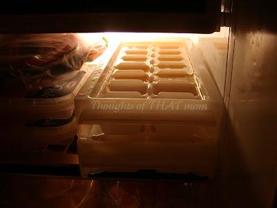 Both Frozen Egg Trays in Freezer