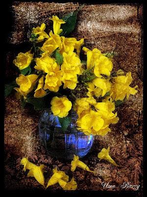 натюрморт с жёлтыми цветами, Uma Barzy