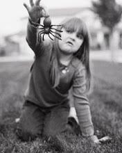No me gustan las arañas