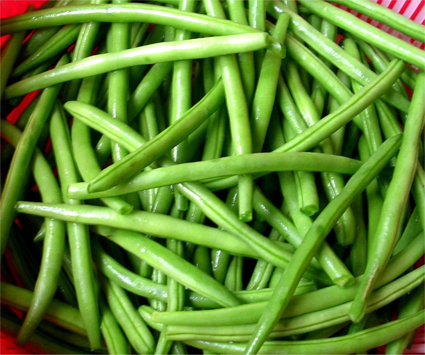 Green Bean Facts