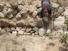 Building drains