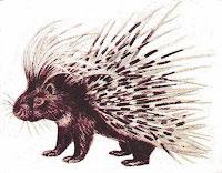 Eastham Porcupine