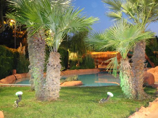 Il giardino giardini in versilia for Progettazione giardini lucca