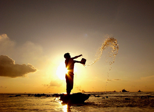 Silhouette On Beach Photography