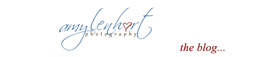 amy lenhart photography