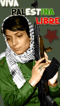 no al genocidio en gaza