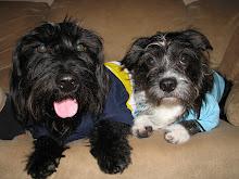Morgan & Baxter