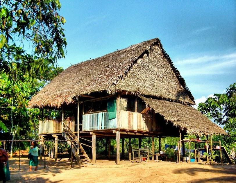Hojas de vida el para so verde - La casa de la madera valencia ...