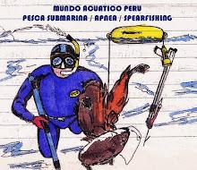 Pesca submarina selectiva y sostenible / actividades subacuaticas