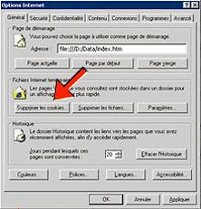Sous-menu 'Général' des Options d'Internet Explorer dans lequel se trouve un bouton permettant de supprimer les cookies.