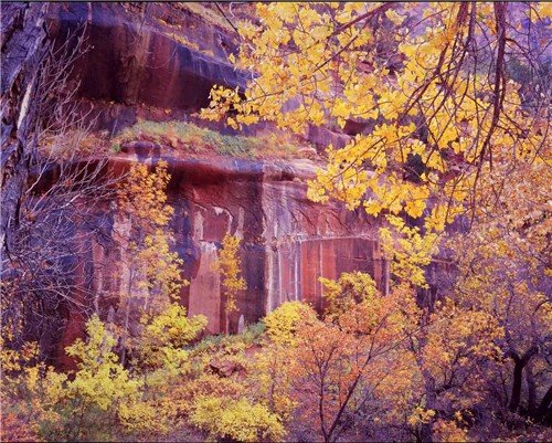 THE GRAND CANYON IN AUTUMN - 180 MILES FROM OUR HOME