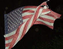 I'm as old as this flag, but we both SALUTE you & our fellow Americans!
