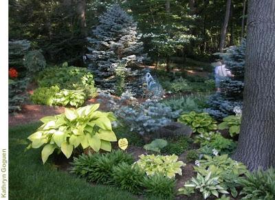 best_garden_landscape