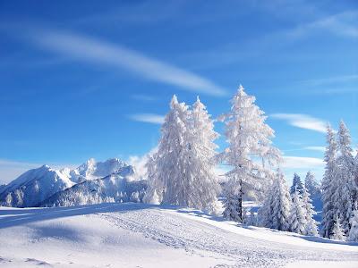 Winter Landscape Wallpaper, Free Landscape pictures - Natural Hill Landscape