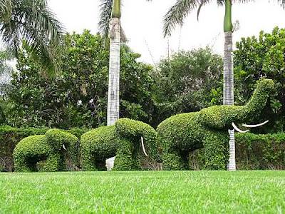 Top Landscape Architecture