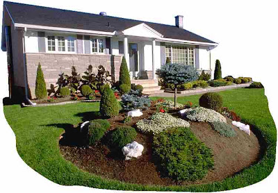 Landscape Design Photos