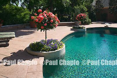 garden landscape architecture 1