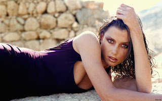 BRIDGET MOYNAHAN LOOKING HOT IN THIS WALLPAPER