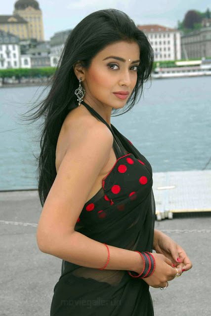 SOUTH INDIAN ACTRESS SHRIYA SARAN MODELING IN SEXY BLACK SAREE
