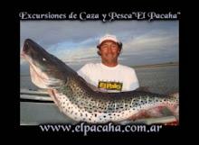 Guia de Pesca En Arocena