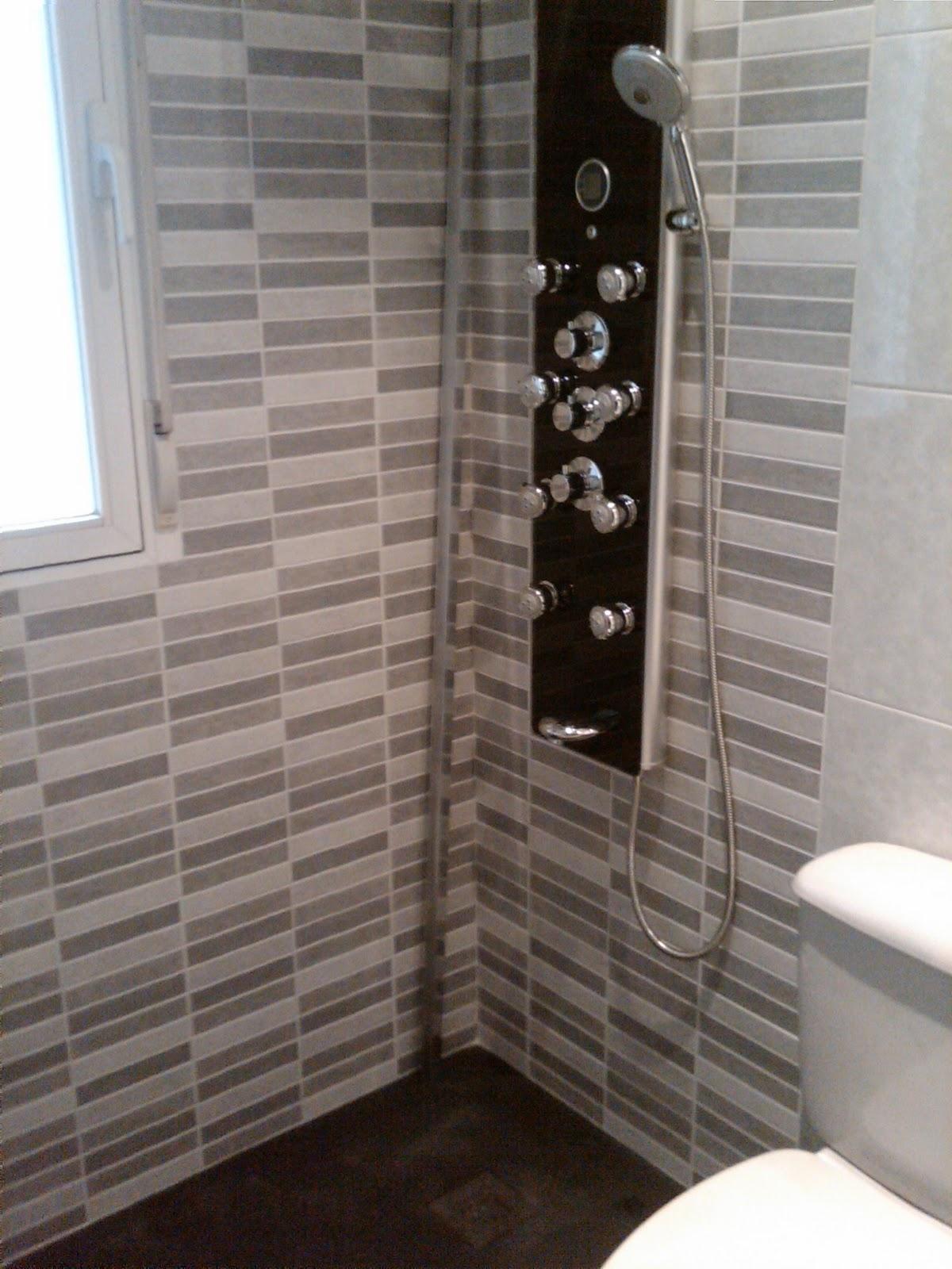 Reformas gafer s l enero 2011 - Azulejos para duchas ...