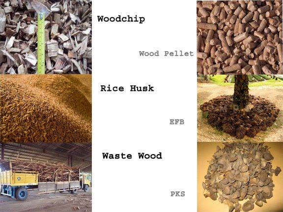 Malaysia Biomass