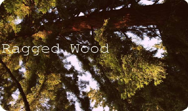 Ragged Wood