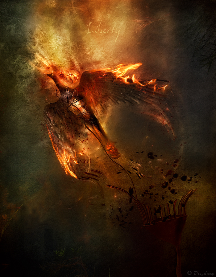Berikut adalah contoh-contoh manipulasi foto dengan menggunakan api ...