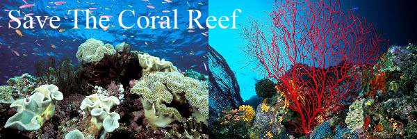 Save The Coral Reef