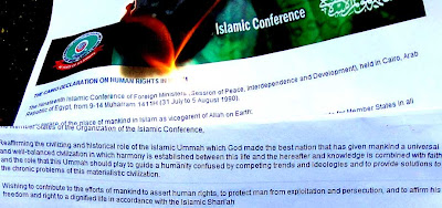 Burn OIC's islamic anti-Human Rights declaration!