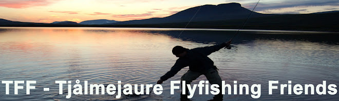 TFF - Tjålmejaure Flyfishing Friends